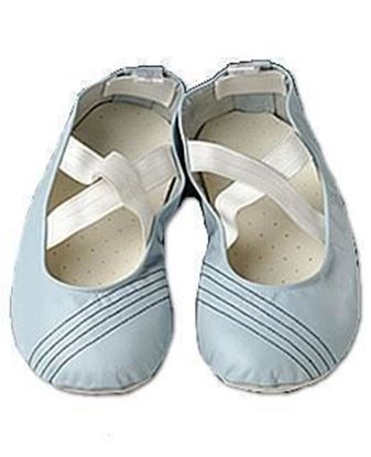 Picture of Pilates shoes Blue