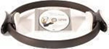 Picture of Pilates Power Ring with DVD