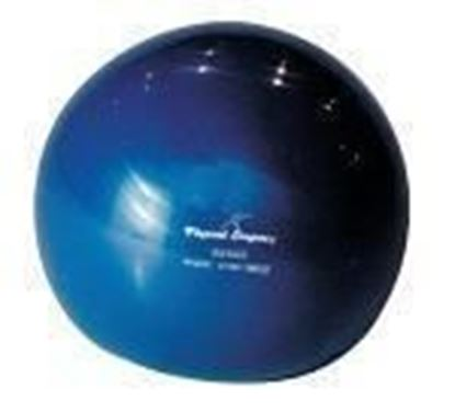 Picture of Weighted Soft Ball - 2kg